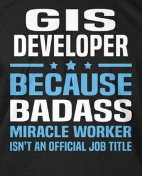 Ricerca gis developer