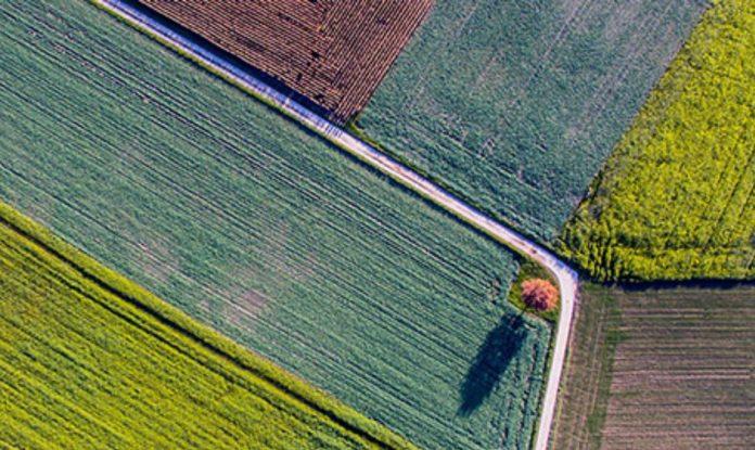 precision farming e agricoltura sostenibile