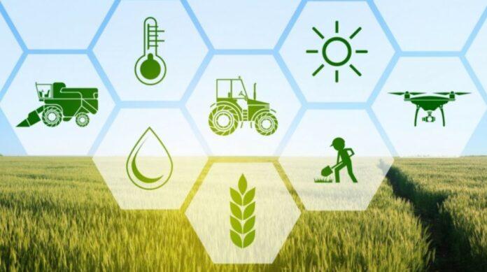 agricoltura di precisione il contributo delCREA