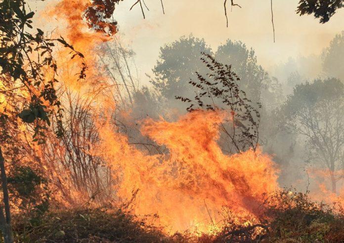 monitoraggio ambientale e prevenzione incendi